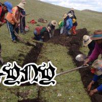 [Peru] O Ayni como proposta solidária contra a escassez de alimentos e contra a avareza do capital