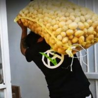 """[México] O grupo anarquista """"Comida Sim Bombas Não"""" vai aos mercados para coletar alimentos"""