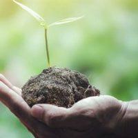 Apresentam um manifesto a favor de uma economia ecológica em Euskal Herria