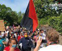 Vídeo | Trabalhadores sazonais romenos na Alemanha entraram em greve