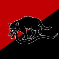 [EUA] Como os gatos pretos passaram da má sorte a símbolos de desobediência