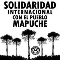[Chile] Solidariedade internacional com o povo mapuche