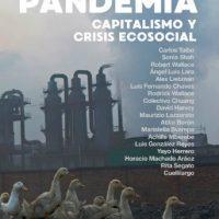 [México] Pandemia: capitalismo e crise ecossocial