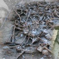 [Espanha] Uma Lei da Memória que esquece as vítimas
