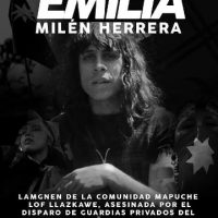 [Chile] Assassinato de lamgnen anárquica no territorio mapuche Lof Llazcawe