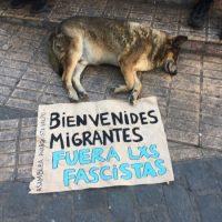 [Chile] Os pobres não têm pátria | Ninguém é ilegal