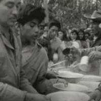 Documentos apontam violação de direitos de povos indígenas no RS durante a ditadura