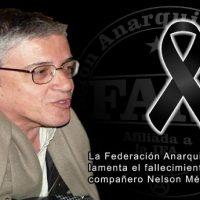 [México] Sobre Nelson Méndez