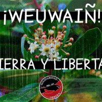 [Chile] Ante o assassinato do weichafe Pablo Marchat, solidariedade com aqueles que resistem ao Capital!