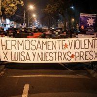 """[Chile] Santiago: """"Luisa já se foi e a melhor homenagem é continuar a luta de rua e frontal contra este sistema de fome"""""""