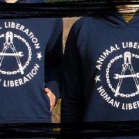 [Grécia] Frente de Libertação Animal assume responsabilidade por ação